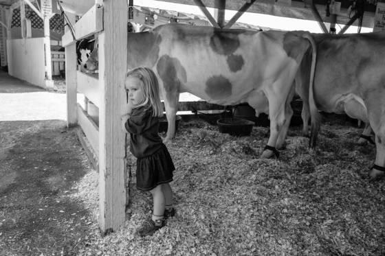 2 cow barn
