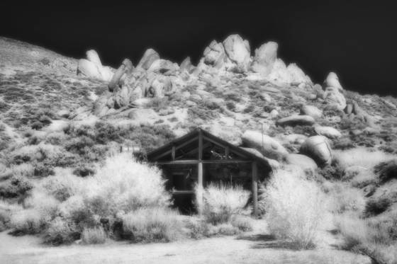 Ghosts of the sagebrush 10