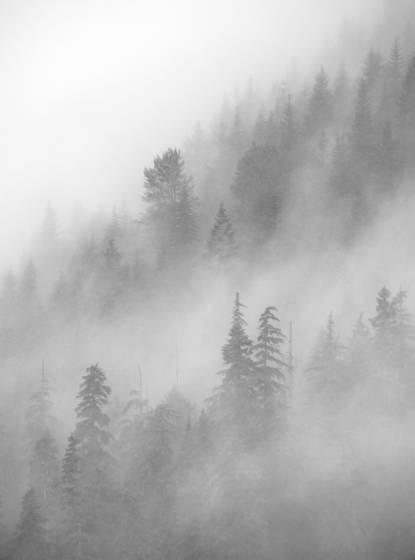 Stevens pass storm 4160