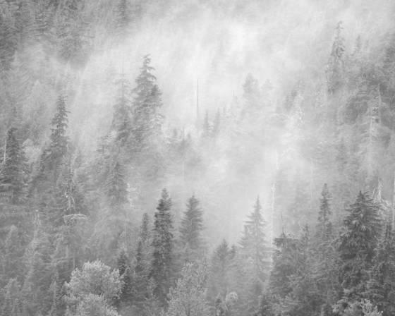 Stevens pass storm 4251