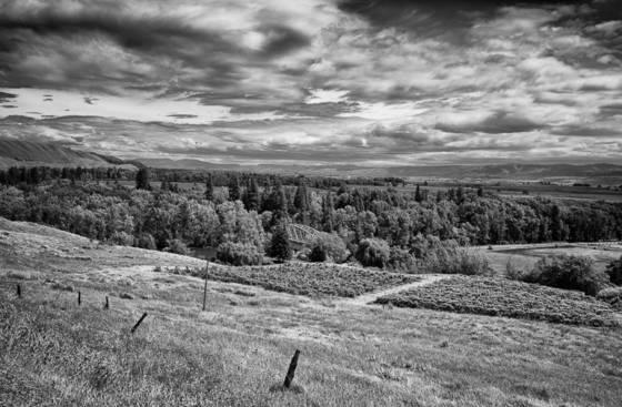 Ellensburg valley