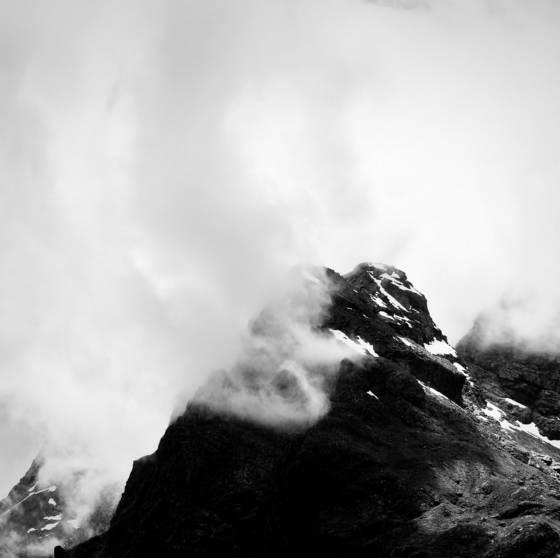 Fiordland 8