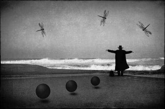 Man in black with dragonflies and spheres