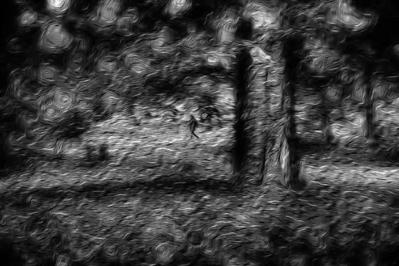 Photo impressionism 12