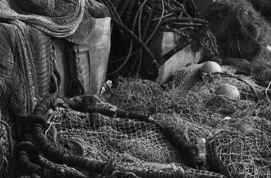 Fishnets