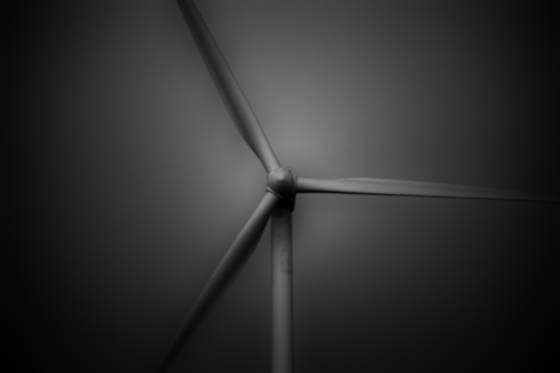 Windy 1
