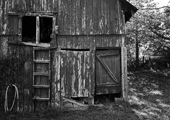 03 old shed