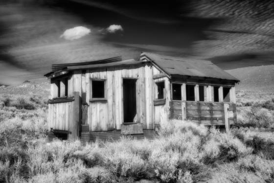 Ghosts of the sagebrush 11