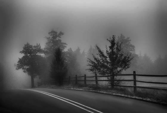 Gentle fog