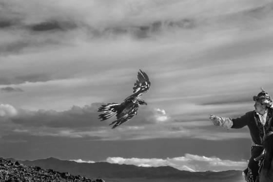 2 eagle hunte