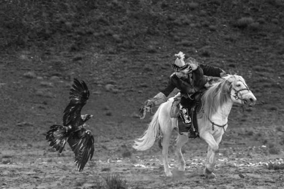 3 eagle festival