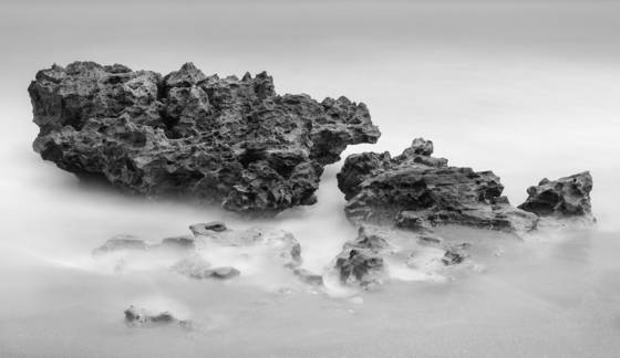 Coral cove park 0532
