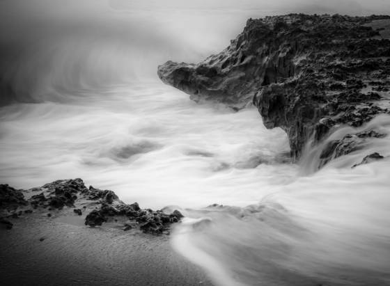 Nature s contradiction hutchinson island