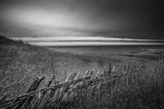 Coastal prairie