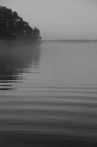 Cedar point mist