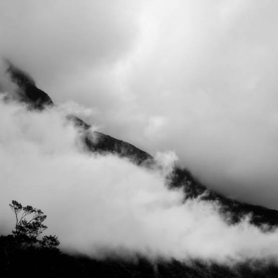 Fiordland 10
