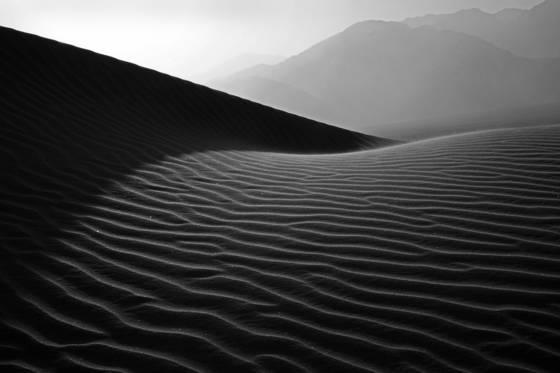 Mesquite dunes  49