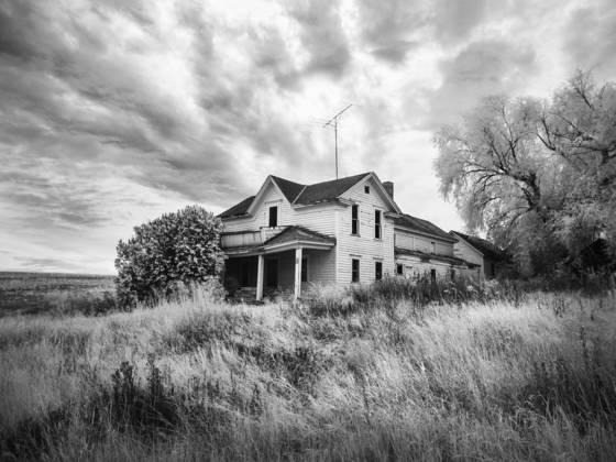 Palouse homestead ir 1048