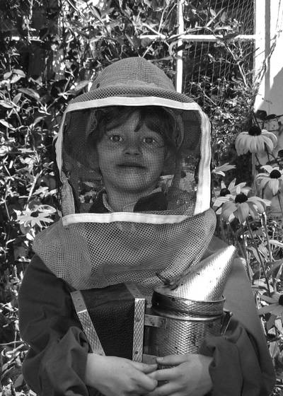 The beekeeper s helper