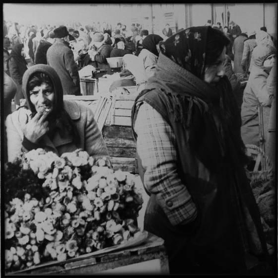Selling flowers in piata unirii