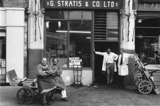 G  stratis and co ltd