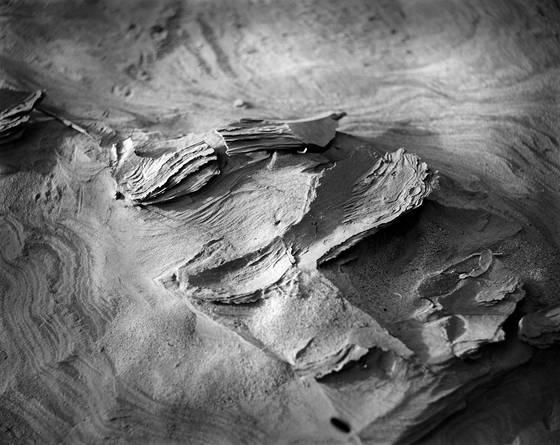 Desert texture  8
