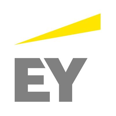 Ernst & Young Capital Advisors, LLC