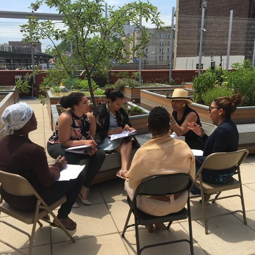 Professional Development Institute session on rooftop garden