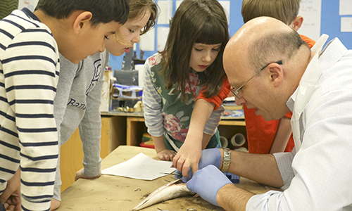 President Suransky dissecting fish with 7/8s students