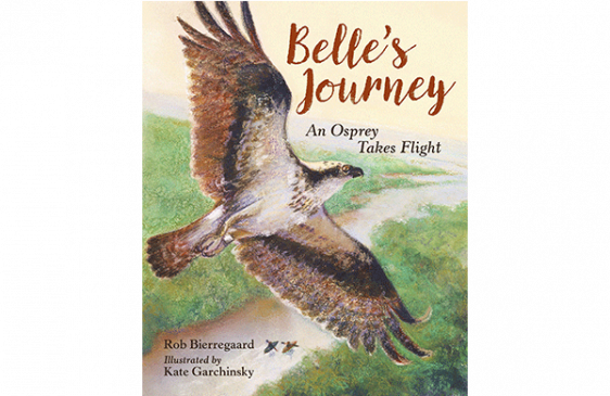 Book cover of Belle's Journey