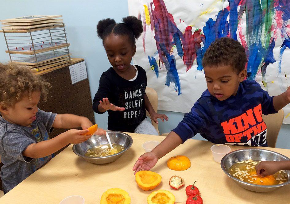 Three preschool children working with pumpkins at table