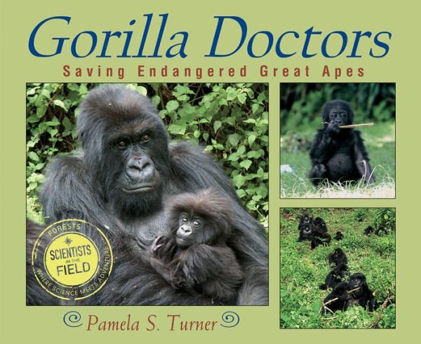 Gorilla doctors saving endangered apes