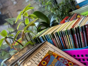 books on windowsill with plants