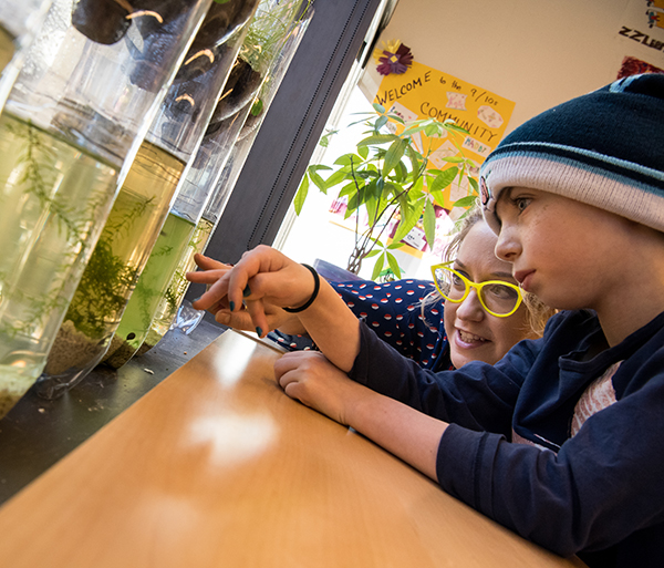 Teacher helps student with science experiment