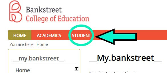 Screen capture of Student Tab
