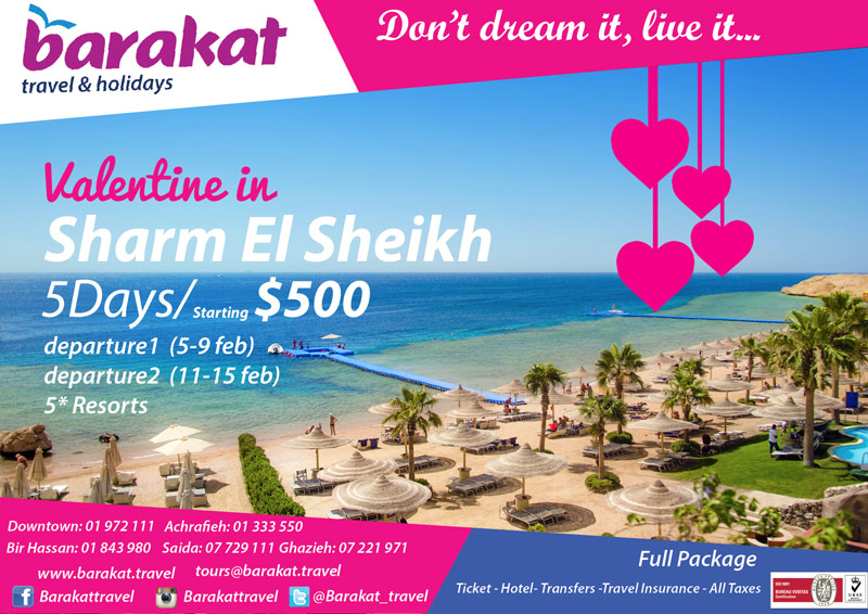 Barakat Travel Packages New Year