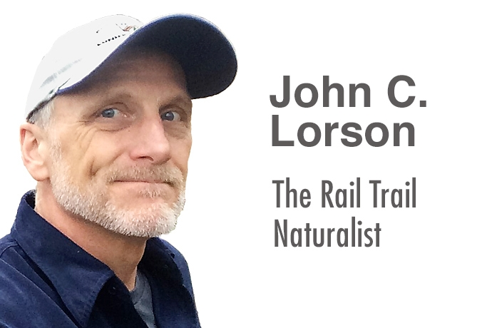 John Lorson: The Rail Trail Naturalist