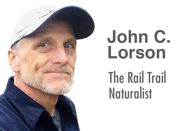 John Lorson: The Rail Trail Naturalist