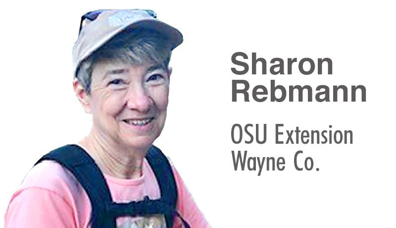 Sharon Rebmann OSU Extension Wayne County