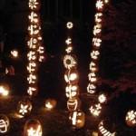 Jack-O-lanterns to Light up Presby Iris Gardens, Tomorrow
