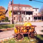 Turnpike Tikes Trips – Chester Harvest Celebration