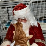 Paws for Santa Claus