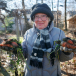 Old Christmas Trees Grow Summer Berries and Other Winter Garden Tips
