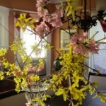 Spring in my House