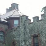 Have a Vision for Kip's Castle Park?