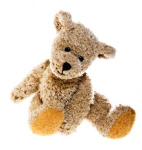 rp_teddy-bear-285x300.jpg