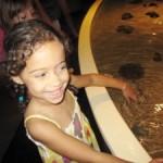 Day Trip: Camden Adventure Aquarium