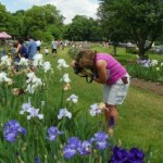 Partying With The Irises at Presby Family Garden Party