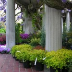 12th Annual Van Vleck Plant and Garden Sale Coming Soon