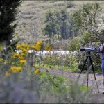 Montclair Bird Club Presents The Nature of the Meadowlands